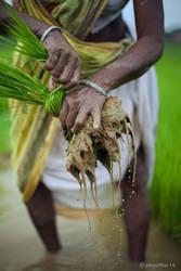 Farmer 5 by khurafati