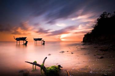 Freedom in the sea by muratgorgulu