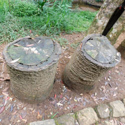 stumps by Takiako-Nakashi
