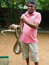a snake master by Takiako-Nakashi