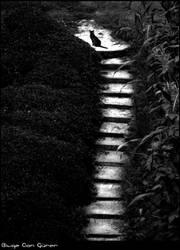 kedimerdiveni by Dredged