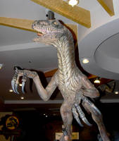 Dinosaur Stock 6 by FairieGoodMother