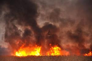 Grass Fire Stock 8 by FairieGoodMother