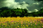 Premade Background 191 by FairieGoodMother