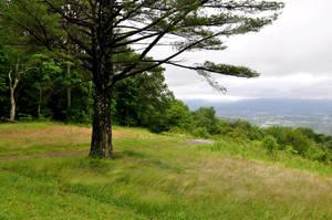 Blue Ridge Mountains Stock 35 by FairieGoodMother