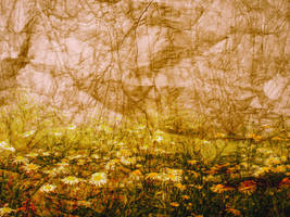 Textured Background 3 by FairieGoodMother