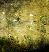 Textured Background 8 by FairieGoodMother