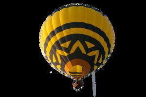 Precute Hot Air Balloons 8 by FairieGoodMother