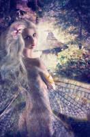 Winterthur Fairy by FairieGoodMother