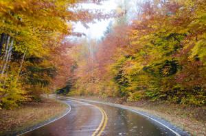 White Mountains  Fall Foliage  007 by FairieGoodMother