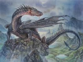 Hebridean Black Dragon by Fabeltier