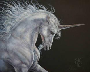 Noble Unicorn by Fabeltier