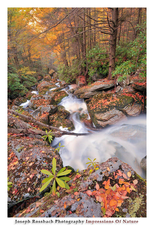 Looking Down Falls by joerossbach