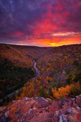 Neverending Autumn by joerossbach