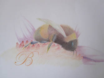Eric the Bee by IHeartVimes