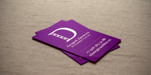 Dronski Logotype and visitcard by dioxyde
