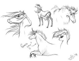 Sketchiez by Alvardy