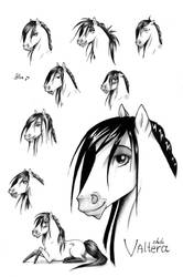 Valtera's Emotions :3 by Alvardy