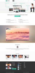Spectro Wordpress Theme by m-themes
