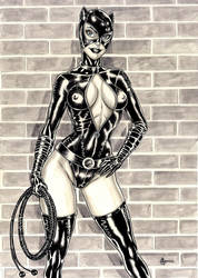 Catwoman by ANDREWCOTINGUIBA