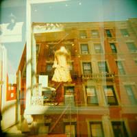 vitrine by lumiga