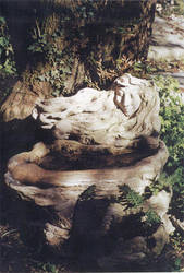 Muse fountain by Doumey