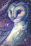 Tyto Galaxy by DanielleMWilliams