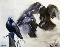 Ptaki by chatte-bleu