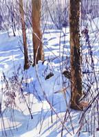Zima 60 by chatte-bleu