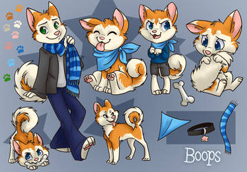 Boops ref sheet by gabapple