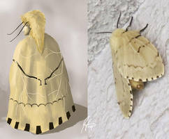 Moth Series 2 - The Heir by SineSquared