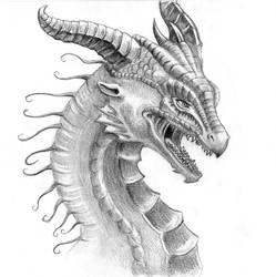 Dragon Face by LiquidDragonN