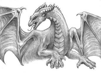 Dragon Pose by LiquidDragonN
