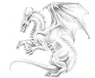Dragon sketch 12-27-06 by LiquidDragonN