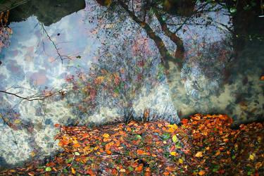 reflection by amunteanu66