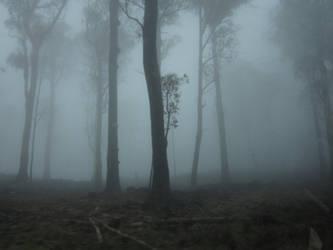 Forest 2 by veryevilmastermind
