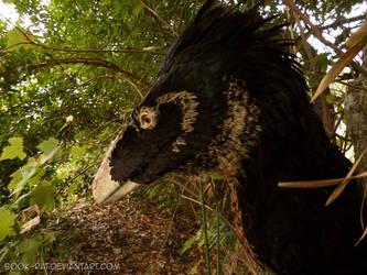 Deinonychus head by Book-Rat