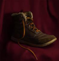 Shoe of my Flatmate by Adrian-W