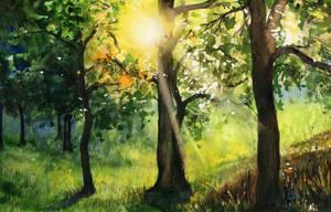 Sunlight by JoaRosa