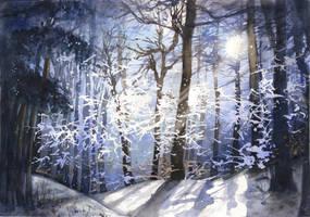 Chilly night by JoaRosa