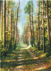 September in Western Pomerania by JoaRosa
