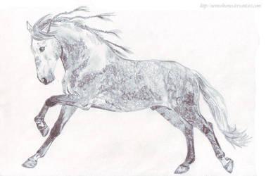 Horse by nemuikumo