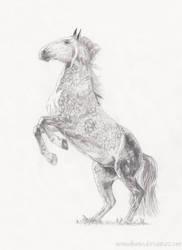 Rearing horse by nemuikumo