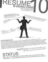 Resume by heydani