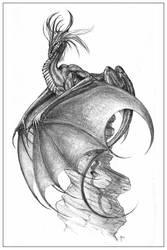 Slate Dragon by gyrfalconthegray