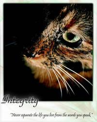 Integrity by dreamer-x