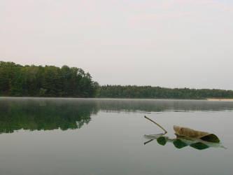 reflection by zindionne