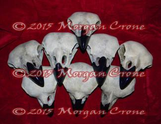 Crow Skulls by MorganCrone