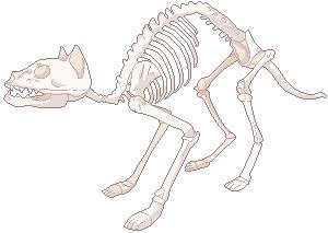 F2U Cat Skeleton by CL4M0