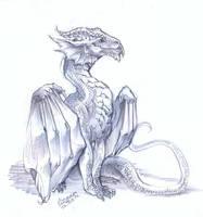 Dragon by Shakara-the-Furious
